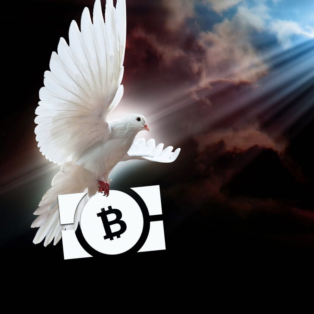 The Art of Sedition: Promote Peace and Win Bitcoin Cash